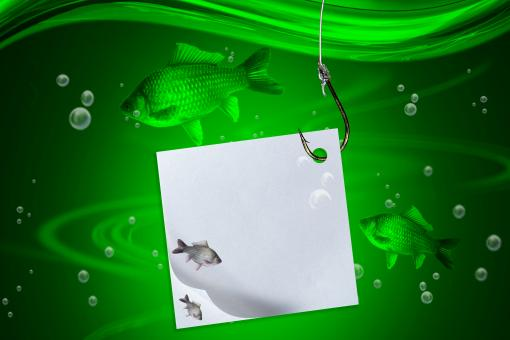Float, fish, fishing line and hook with  - Free Stock Photo
