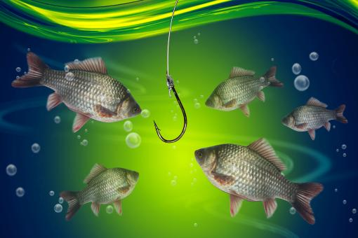 Fishing line and hook - Free Stock Photo