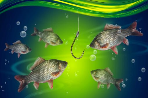 Fishing line and hook under water - Free Stock Photo