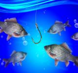 Free Photo - Fishing line and hook under water