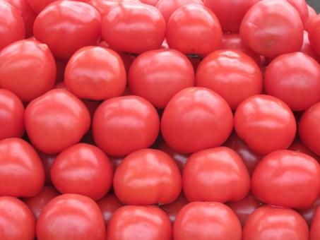 Tomatoes at the market - Free Stock Photo