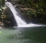 Free Photo - Natural Waterfall in Forest