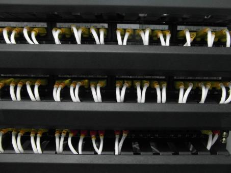 Server Network Cables - Free Stock Photo
