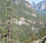 Free Photo - Yosemite National Park