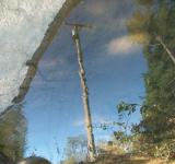 Free Photo - Reflections