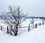 Free Photo - Winter village scene