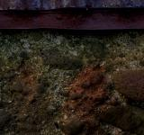 Free Photo - Rust stained concrete wall