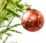 Free Photo - Christmas ball on branch