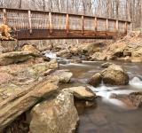 Free Photo - Cunningham Forest Bridge & Stream - HDR