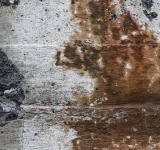 Free Photo - Gritty Wall Texture