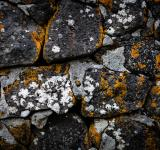 Free Photo - Old Stone Wall Texture