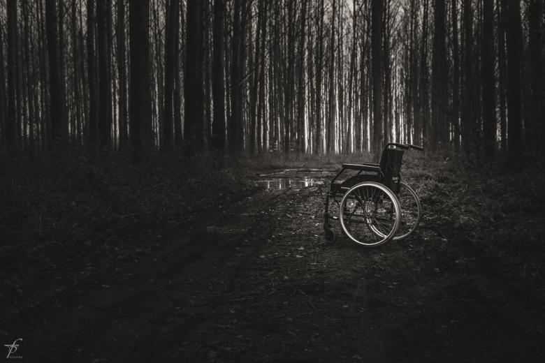 Free Stock Photo of Wheelchair in the woods Created by Frantisek Pech