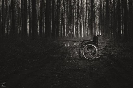 Wheelchair in the woods - Free Stock Photo