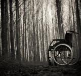 Free Photo - Wheelchair in the woods