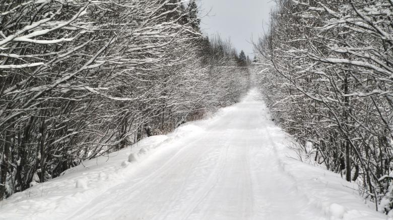 Free Stock Photo of Winter road Created by Mikhail