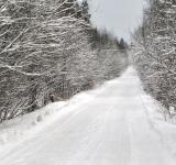 Free Photo - Winter road