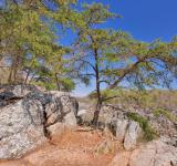 Free Photo - Great Falls Rocks & Foliage