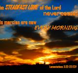 Free Photo - Steadfast Love