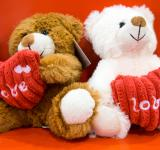 Free Photo - Valentine bears