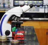 Free Photo - Microbiology Laboratory