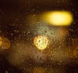 Free Photo - Rainy window