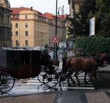 Free Photo - Horse Carriage
