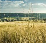 Free Photo - meadows and hills
