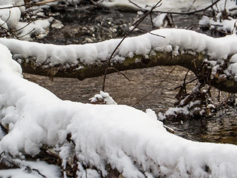 Free stock image of Spring and ice created by Janis Urtans