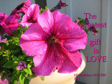 The Greatest Gift Is Love - Free Stock Photo