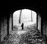 Free Photo - child walking under bridge in forest