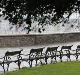 Free Photo - Benches in park