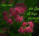 Free Photo - All Things are Possible with God
