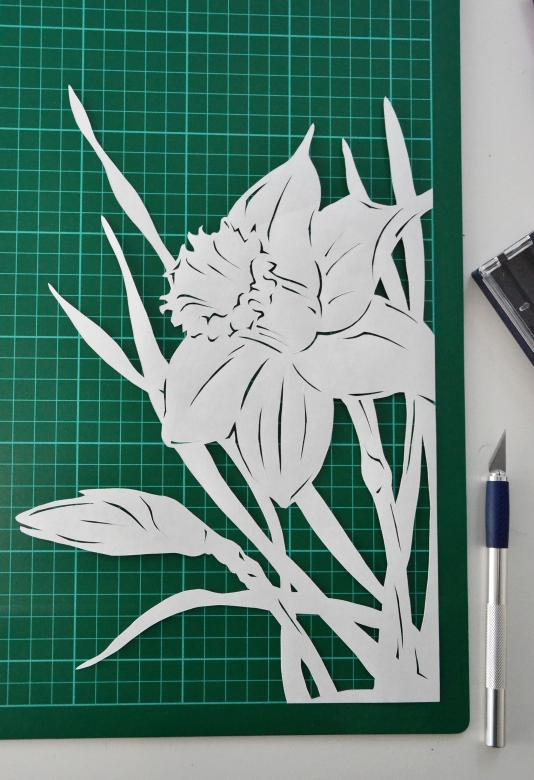 Free Stock Photo of Narcissus paper cutting Created by Tomas Adomaitis