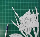 Free Photo - Daffodil paper cutting