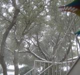 Free Photo - Snow in Texas