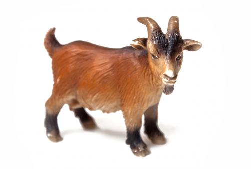 Goat plastic toy for kids - Free Stock Photo