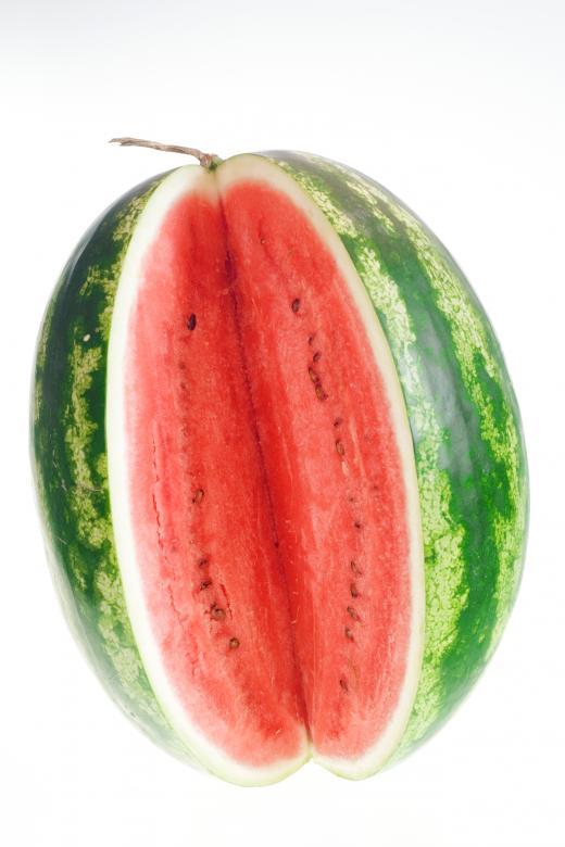 sex-goddess-sexfree-watermelon-oral-sex