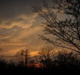 Free Photo - Late spring evening