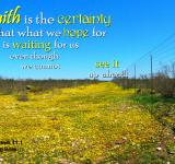 Free Photo - Faith is the Certainty