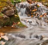 Free Photo - Dark Hollow Falls Stream - HDR