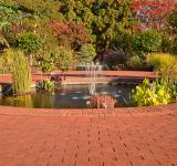 Free Photo - Autumn Arboretum Fountain - HDR