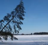 Free Photo - Winter Landscape