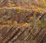 Free Photo - Sideling Hill Close-up - HDR Texture