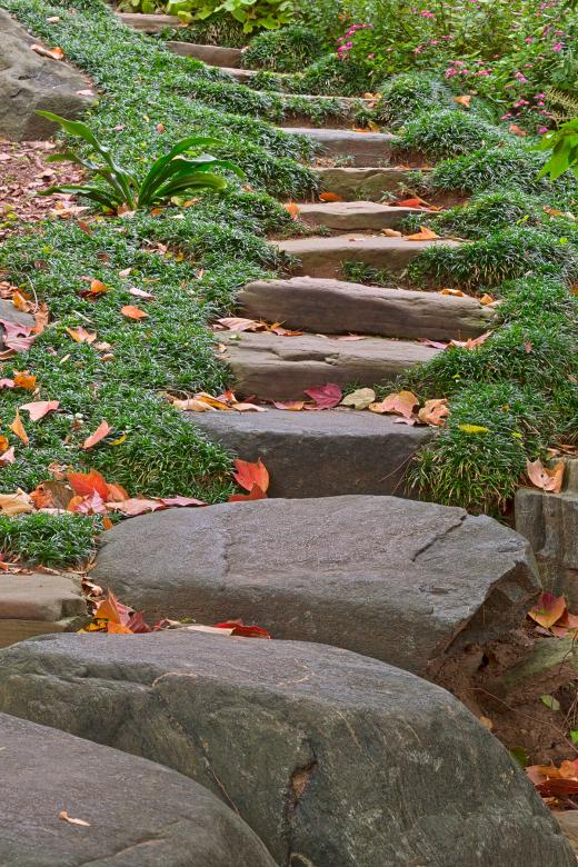 Free Stock Photo of Arboretum Stepping Stones - HDR Created by Nicolas Raymond