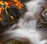Free Photo - Glen Artney Stream - HDR