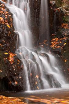 Avalon Falls - Free Stock Photo