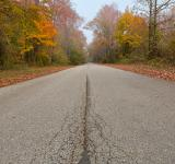 Free Photo - Misty Fall Road - HDR