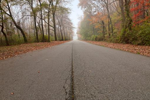 Misty Fall Road - HDR - Free Stock Photo