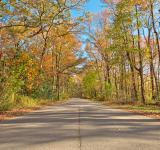 Free Photo - North Point Fall Road - HDR