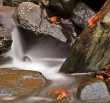 Free Photo - Glen Artney Stream